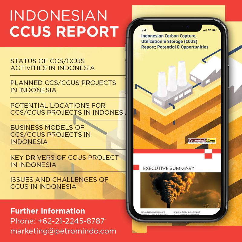 CCUS REPORT